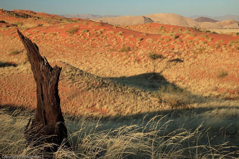 Namibia09-1178