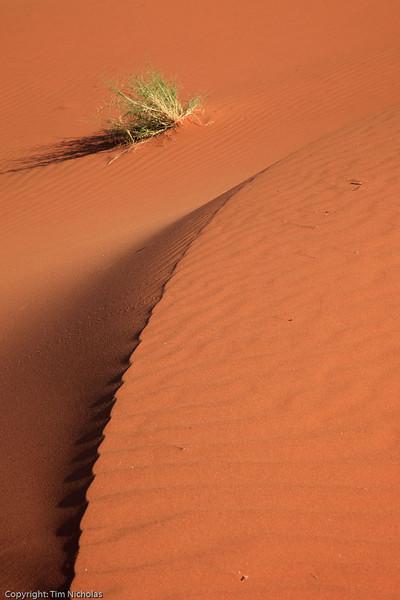 Tsonab Valley Farm: Dune Curves 2