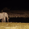 Okakuejo Waterhole at night / Etosha