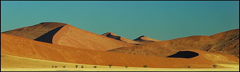 Dune # 7