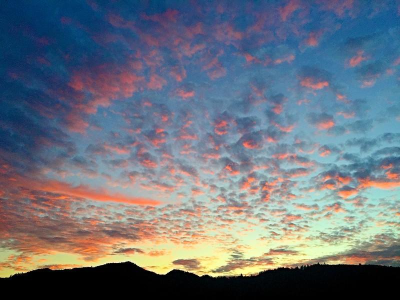 jan sunset at cornerstone yountville