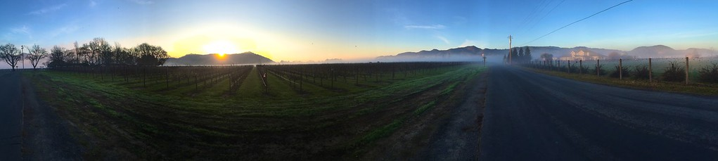 yountville jan pano