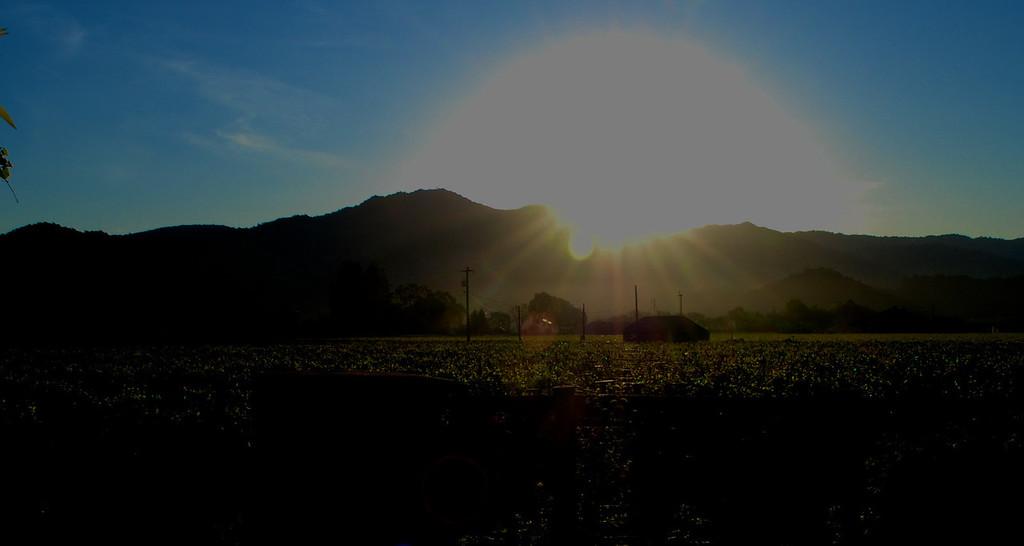 Spring dawn over Atlas Peak, Napa Vally