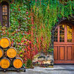 Oak-Wine-Barrels-at-Chateau-Montelena-Winery_Napa-Valley-Wine-Country-California-Door-Fall-Colors-Reflections_DSC2901-Anniversary-Gift-Wine-Country-Wine-Lover-Gift