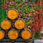 Oak-Wine-Barrels-at-Chateau-Montelena-Winery_Napa-Valley-Wine-Country-California-DSC2900-Anniversary-gift-Wine-Country-Wine-Lover-Gift