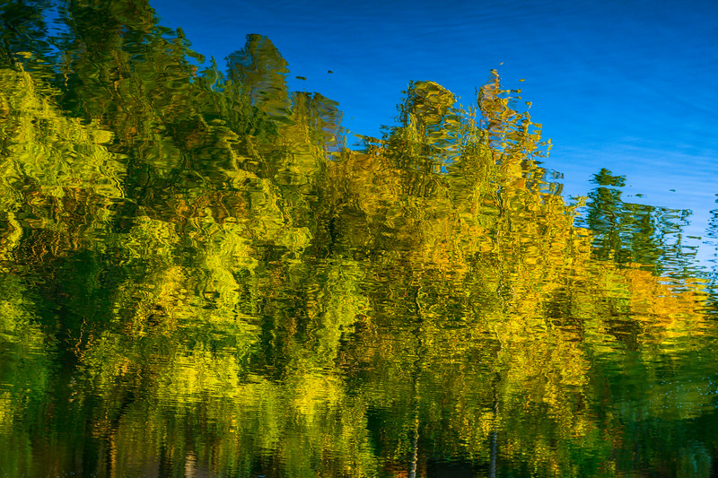 Monet-Tree-Reflections-in-Fall-jade-lake-Chateau-Montelena-Winery_napa-valley-winery-wine-country-california-vineyard-Anniversary-Gift-Wine-Country-Wine-Lover-Gift_DSC2896