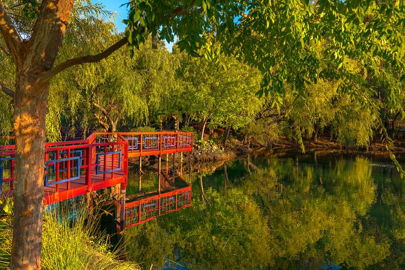 Late Afternoon at Jade Lake Chateau Montelena Winery, Napa Valley, California