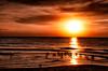 20111025-FK2_4051-Edit-Edit