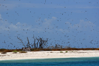 Bush Key is closed due to the bird nests on the island.