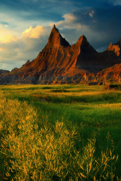 A Row Of Yellow - Badlands National Park, South Dakota