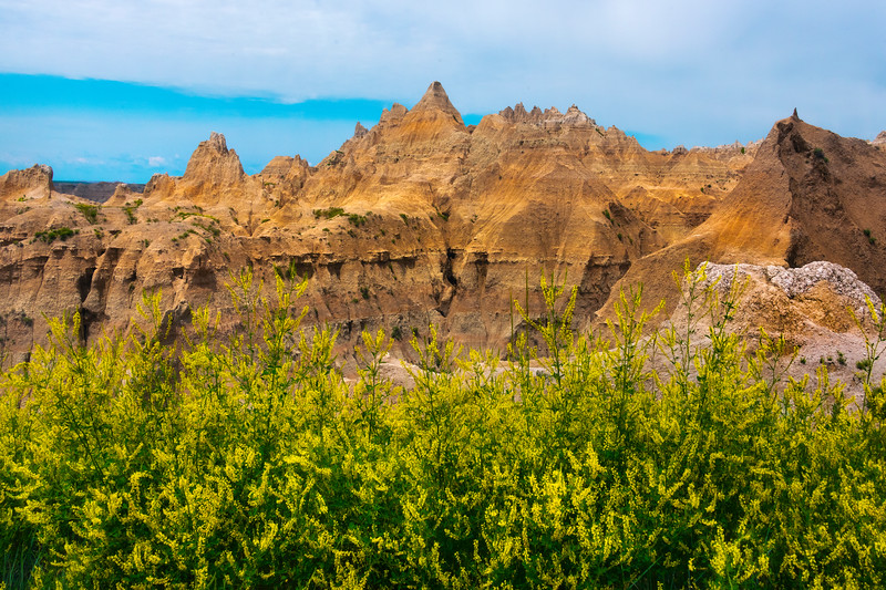 A Wall Of Red Gold - Badlands National Park, South Dakota