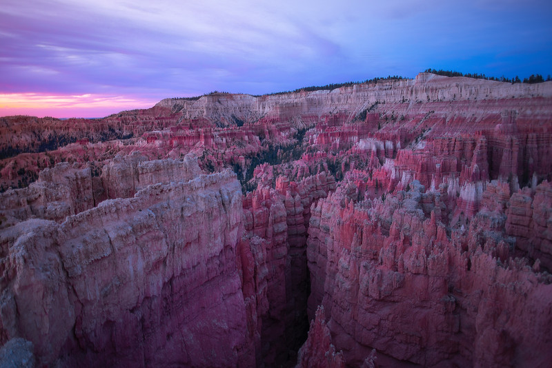 Bryce Canyon Viewpoint As Sunrise Light Breaks - Bryce Canyon National Park, Utah