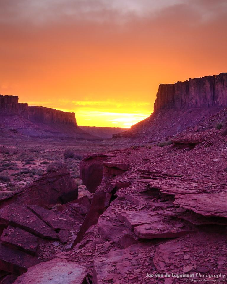 The purple canyon
