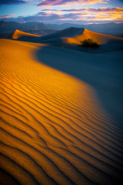 The Inside Track On The Ripples - Death Valley National Park, Eastern Sierras, California