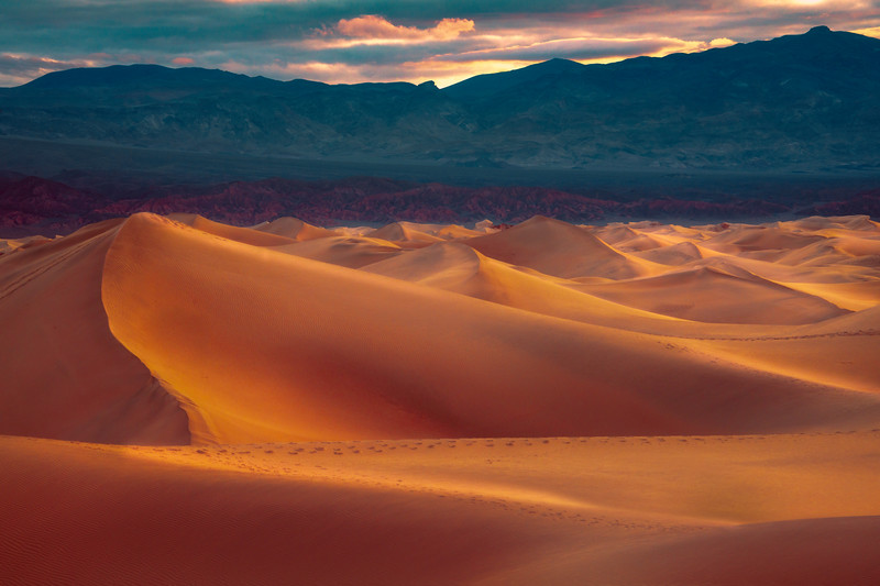 Mesquite Dunes In Early Morning Light - Death Valley National Park, Eastern Sierras, California