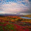 - Denali National Park, Alaska