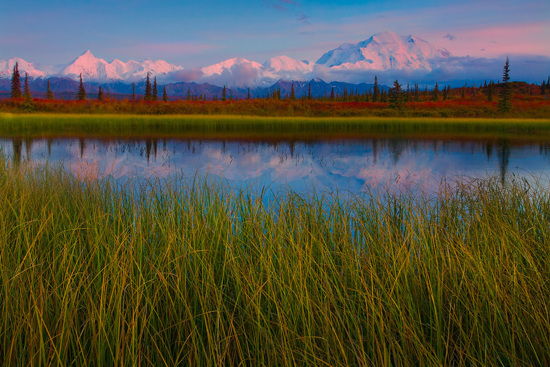 The Stunning Colors Of Alpenglow On Denali - Denali National Park, Alaska