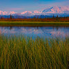 The Stunning Colors Of Alpenglow On Denali - Denali National Park, Alaska