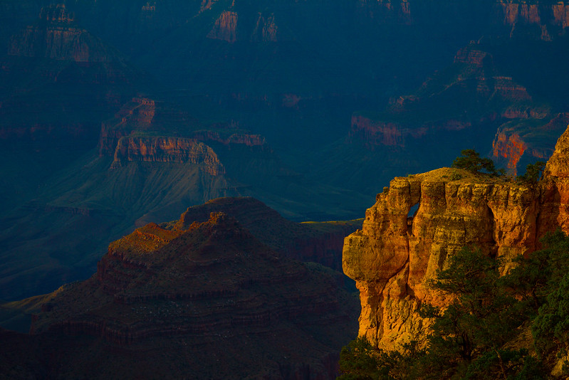 Subtle Light In The Canyon - North Rim, Grand Canyon Nat Park, Arizona