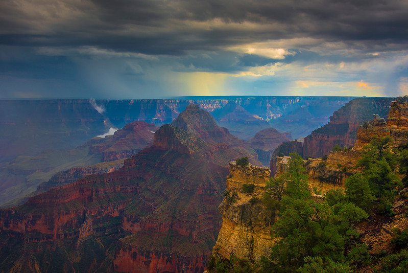 Afternoon Build Up Of Clouds - North Rim, Grand Canyon Nat Park, Arizona