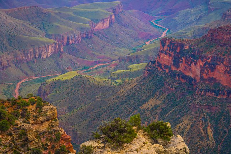 The River Valley Of The Canyon - North Rim, Grand Canyon Nat Park, Arizona