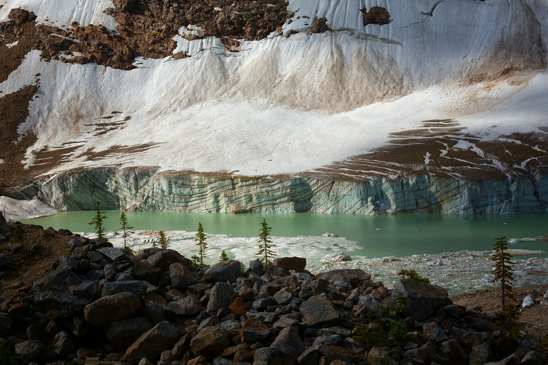 Ice wall from Angel Glacier at Cavell Pond.