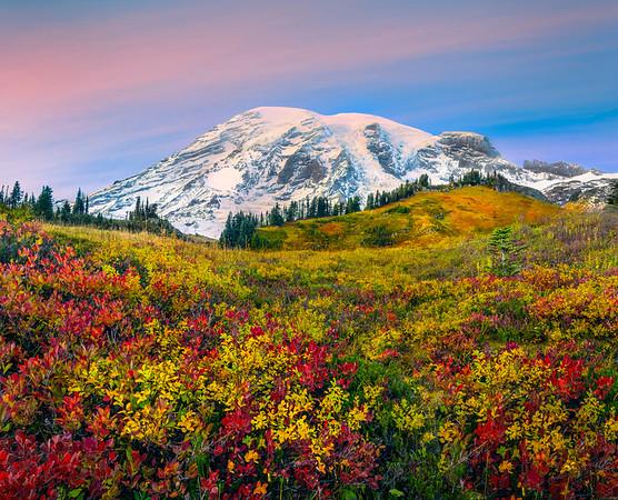 Pink Pastels And Autumn Color Together - Mount Rainier National Park, Washington