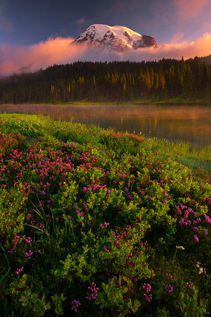 Summer Arrival At Reflection Lakes - Mount Rainier National Park, Washington