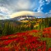 Updraft On Mt Rainier