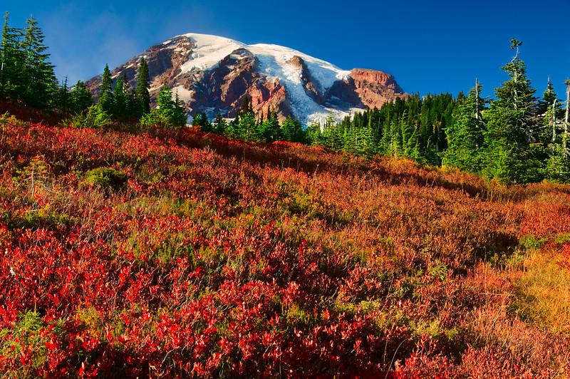 Mount Rainier Fall