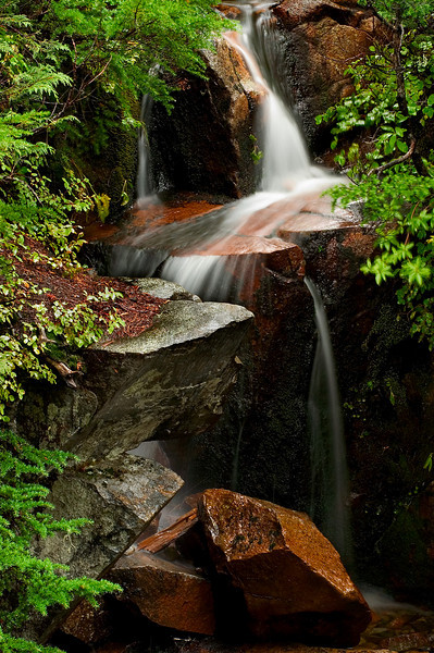 Mount Rainier Mini-Waterfall