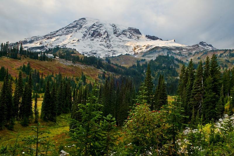 Paradise Valley with Mount Rainier