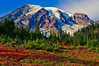 Mount Rainier in the fall from Paradise