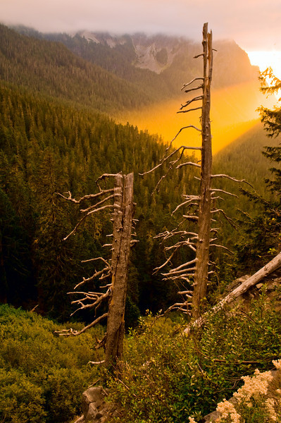 Dramatic light at sunset in a valley below the Tatoosh Range, Mount Rainier National Park