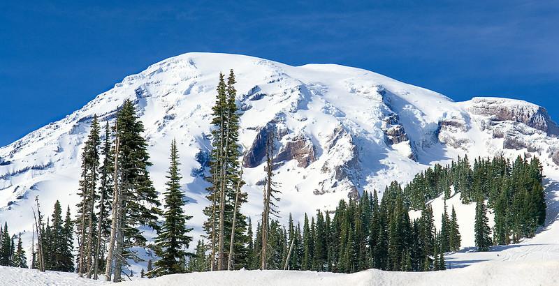 Mount Rainier mid spring