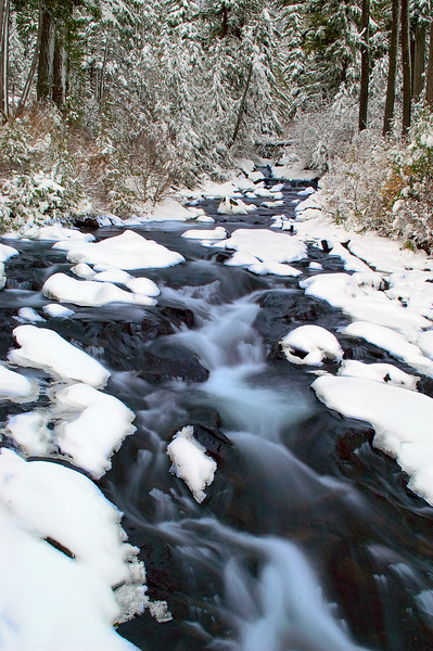 Paradise river early winter