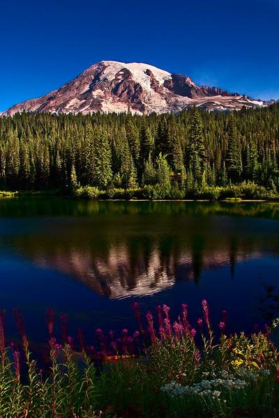 Reflection Lake at sunrise - Mount Rainier NP