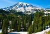 Mount Rainier and the Paradise Valley, Mount Rainier National Park, WA