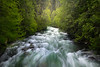 Canyon Creek Trail North Cascades - Canyon Creek Trail, - Diablo Lake Viewpoint, North Cascades National Park, WA