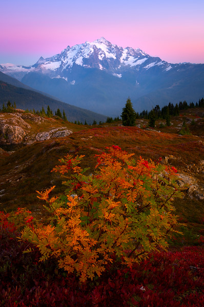 Pink Glow Sets Over Mt Shuksan - North Cascades National Park, WA