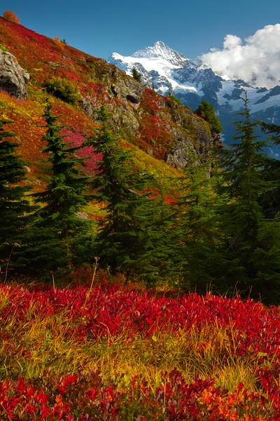 Layers Of Seasons Beneath Mt Shuksan - North Cascades National Park, WA