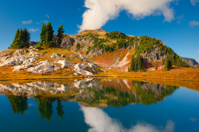 Islands Of Reflections Reflected In Tarn - North Cascades National Park, WA