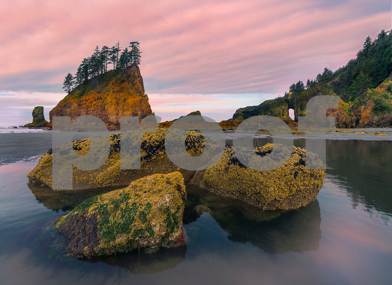 Images from the Olympic National Park Olympic National Park, Washington