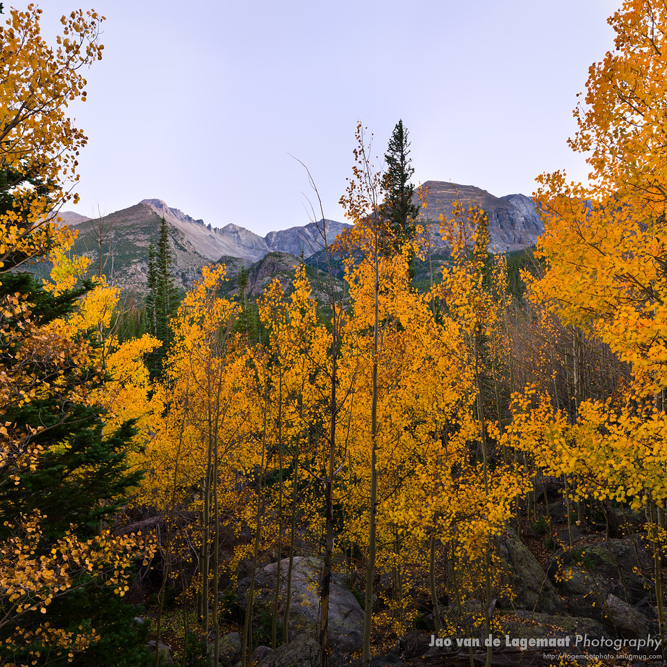 Fall color and Longs peak