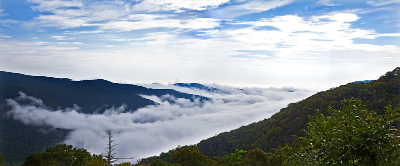 Panorama of the fog in the valley from one of the Skyline drive overlooks.