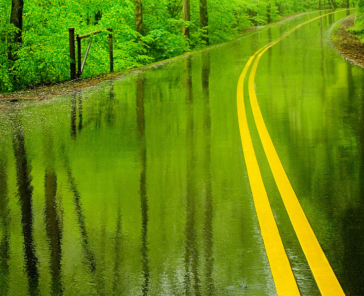 Greentree heavy rains make the roadway into a mirror Smoky Mountains National Park