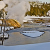 stream and  Bisen;  Yellowstone in Winter