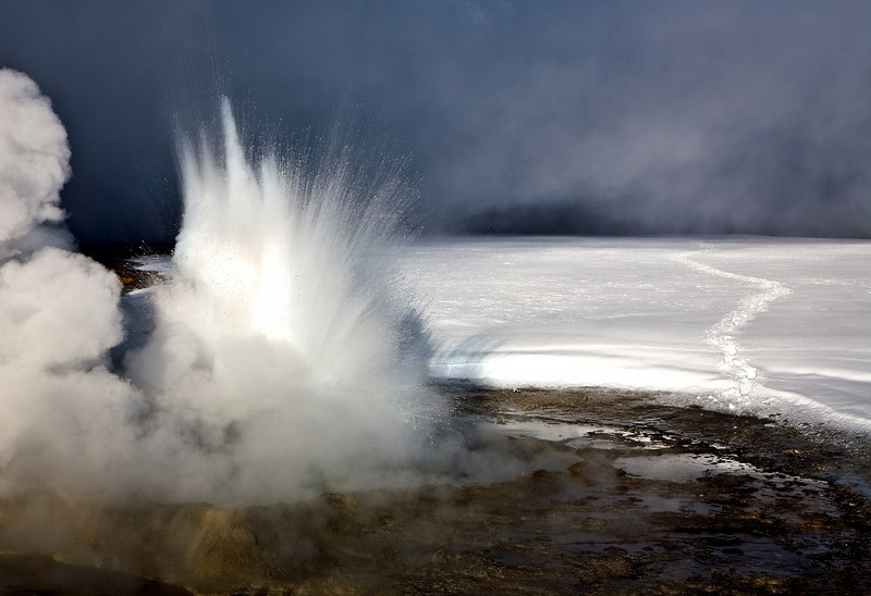 exploding geyser.  Note the bisen tracks in the snow.  Yellowstone in Winter