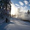 tree shadow Bisen;  Yellowstone in Winter