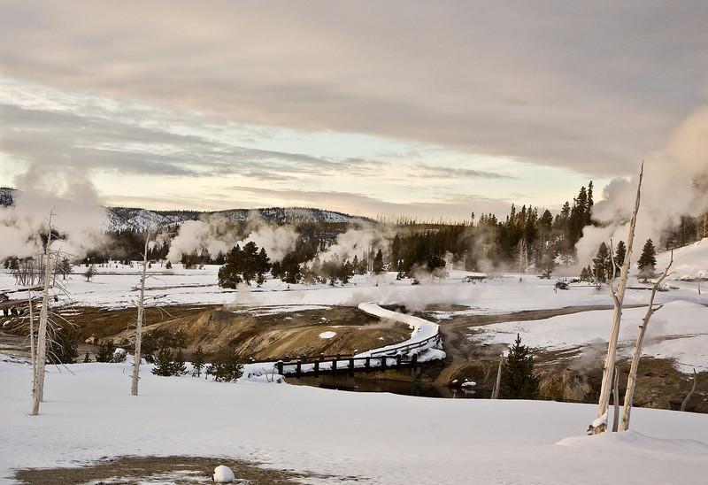 geyser basin Bisen;  Yellowstone in Winter